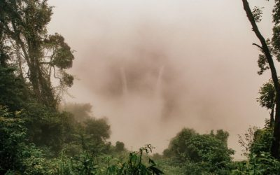 The Bolaven Plateau Laos in 1 Day