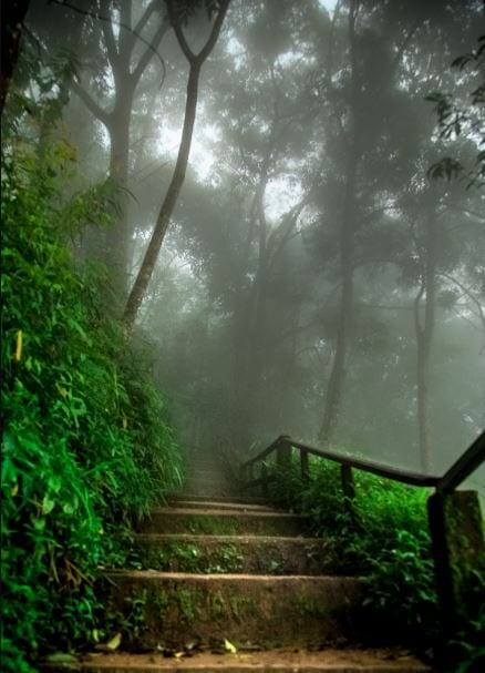 Stairs in Dreamy Laos