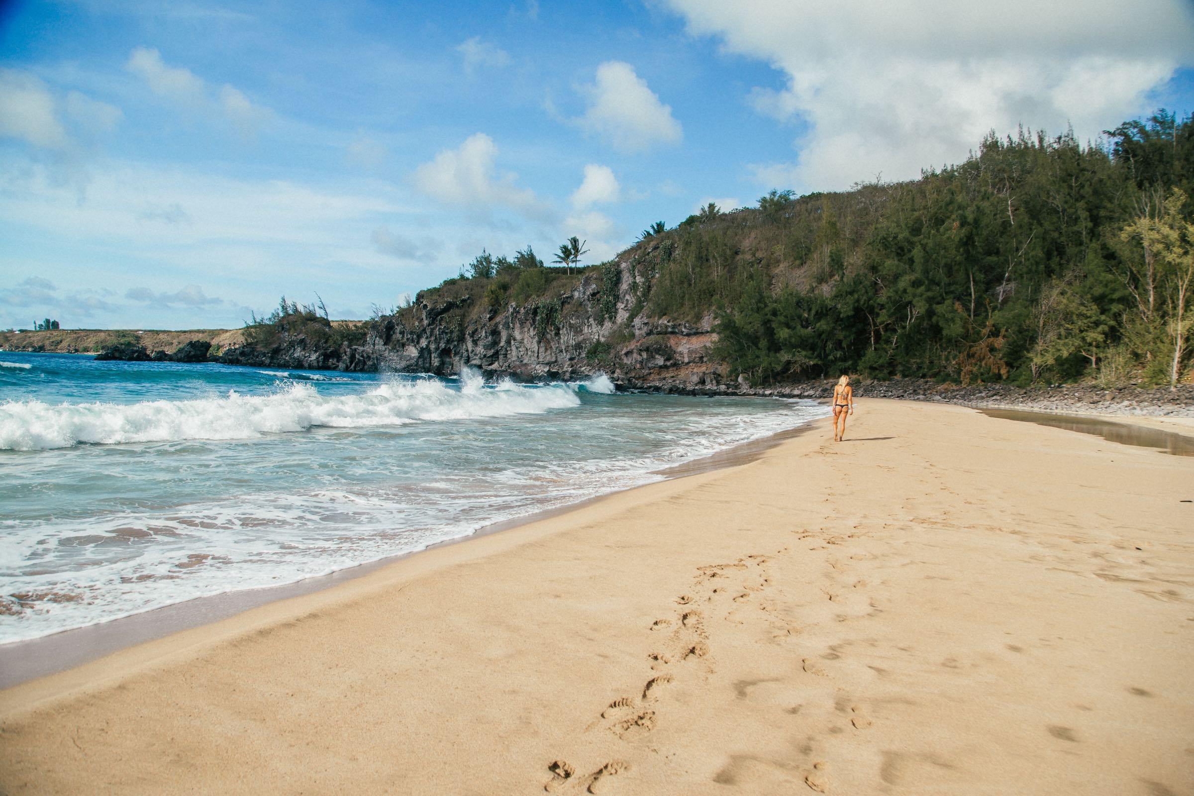 Maui Beach Guide