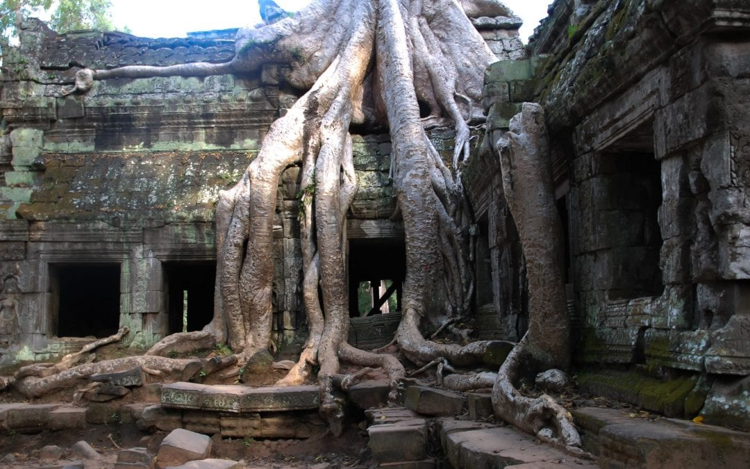 Where to Stay in Siem Reap, Cambodia