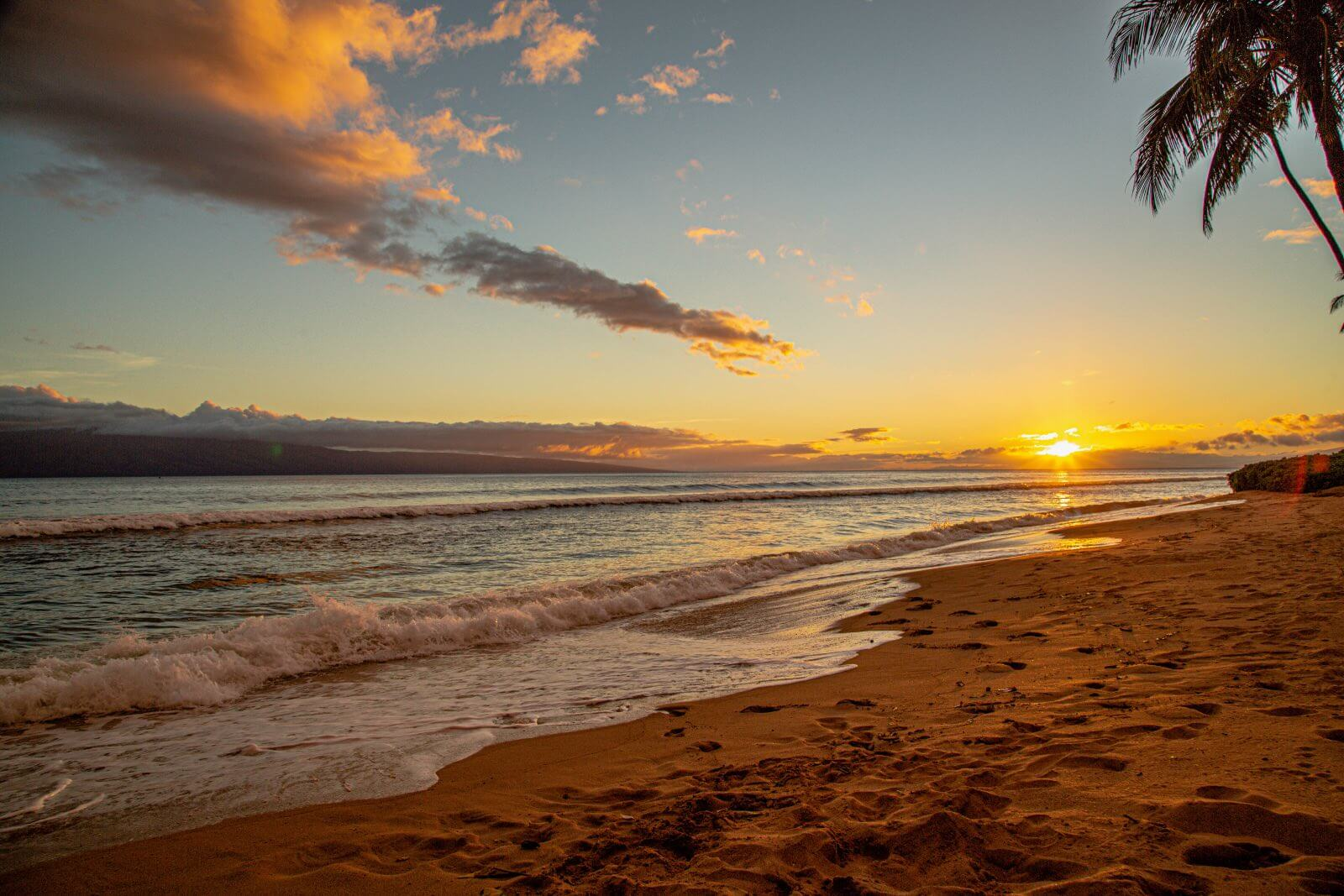 Sunset at Kaanapali Beach Maui with a palm tree