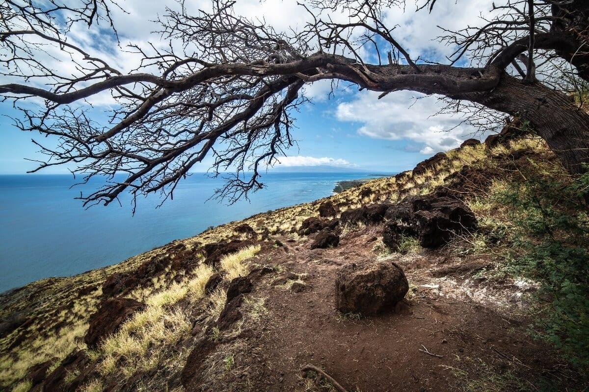 Lahaina Pali Hike in West Maui