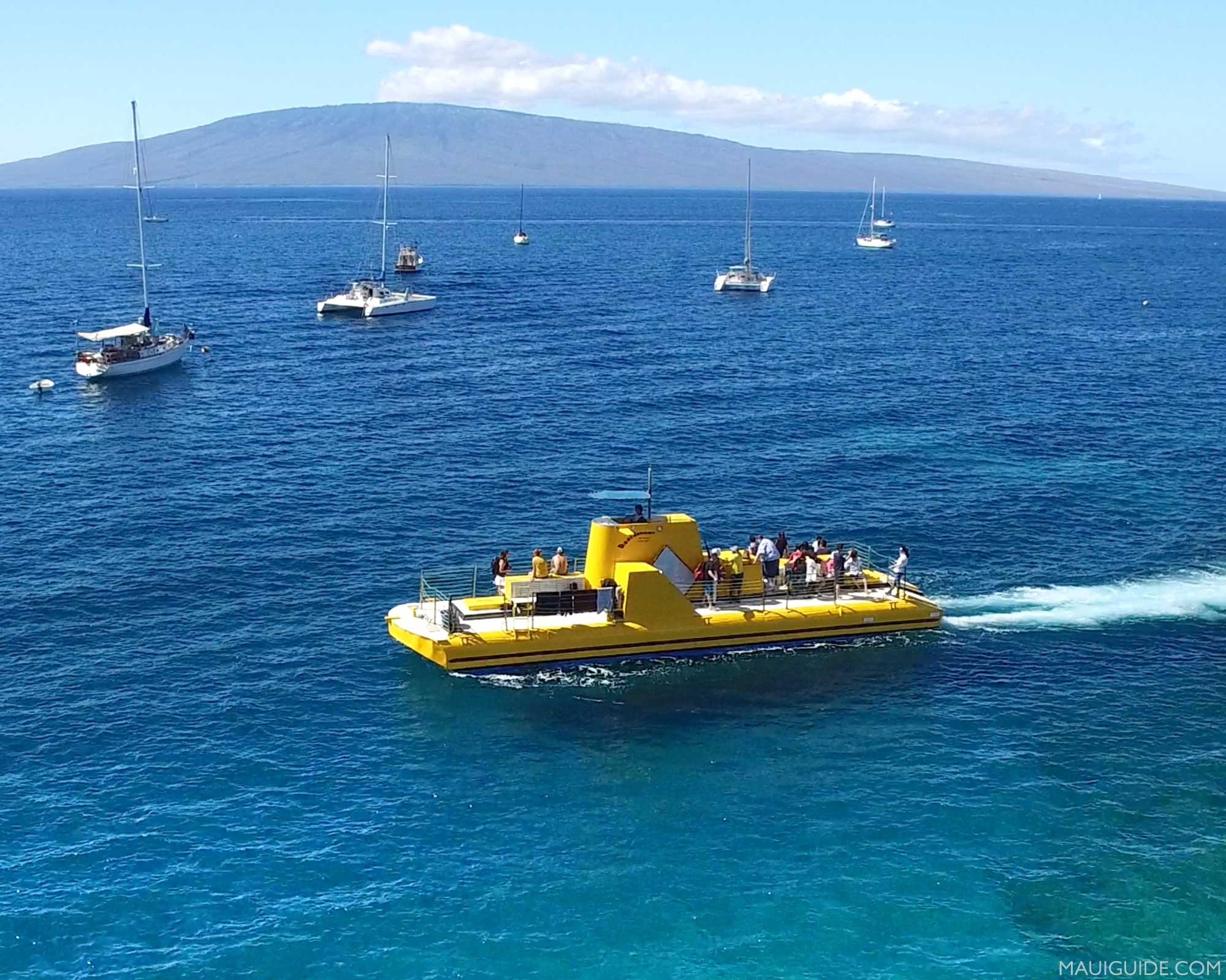 reefdancer in Maui Hawaii unusual things to do in maui