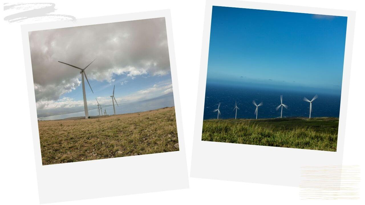 The windmill hike lahaina
