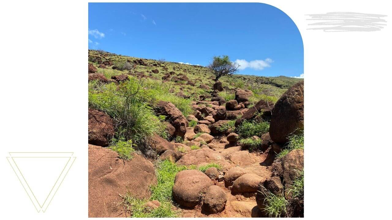The Lahaina Pali Trail